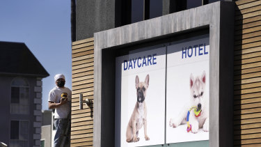 A picture of a French bulldog is featured above the entrance of Dog-E-Den Hollywood, near where Lady Gaga's dog walker was shot.