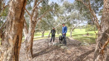 Experts say green spaces with a diverse range of native species can improve people's health.