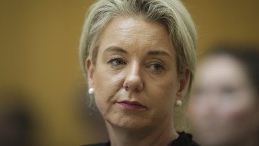 Senator Bridget McKenzie was criticised in the report for her role in a process where $100 million of funds were distributed to sports clubs around the country.