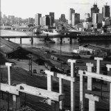 Pyrmont Bridge as the Western Distributor was built in 1978.