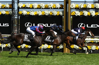 Prince Of Arran finishes third behind Twilight Payment in last year's Melbourne Cup.