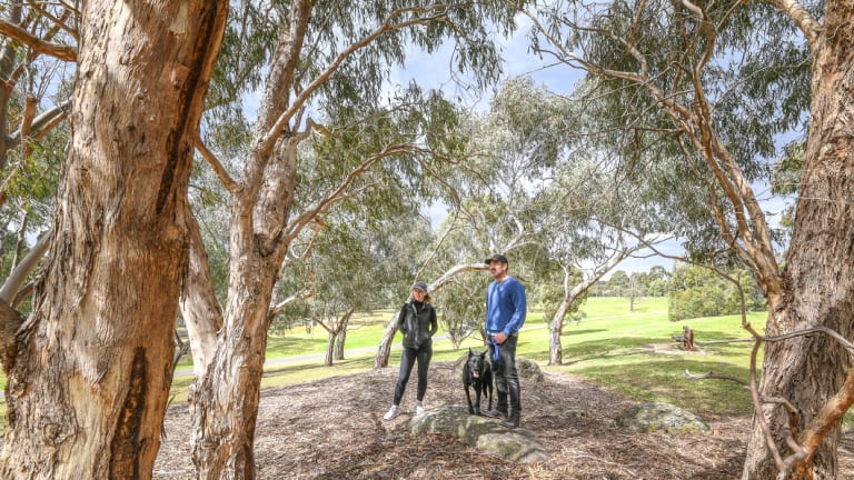 Chris Drieberg, his wife Sharon and their dog Aussie in the Koonung Creek Reserve in North Balwyn. Much of the park will be lost in the widening of the Eastern Freeway.