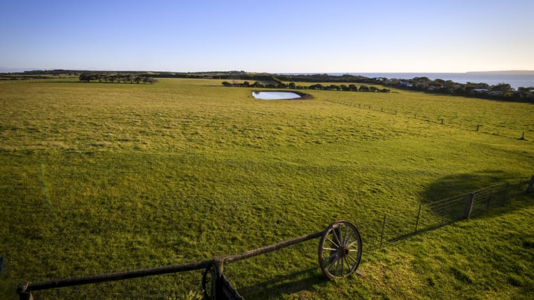 The farmland near Ventnor on Phillip Island that was rezoned by former planning minister Matthew Guy.