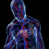 Could doctors use machine learning to detect heart attacks faster?