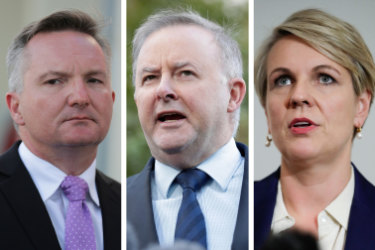 Chris Bowen was considering running against Anthony Albanese, while Tanya Plibersek ruled herself out.