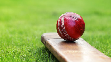 Home boards will continue to be able to choose the ball for Test cricket.