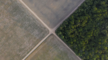 A section of Amazon rainforest stands next to soy fields in Belterra, Para state, Brazil.