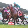 Veteran Humidor locks in Cox Plate spot