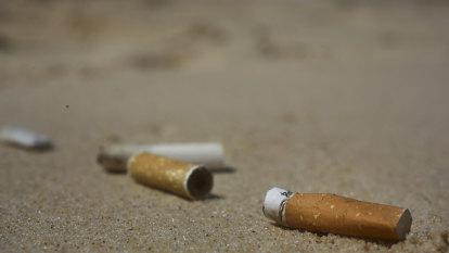 Smoking kills half of all older Aboriginal and Torres Strait Islander adults, study