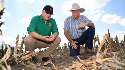 'This isn't welfare': PM pledges another $100m for drought-ravaged farmers
