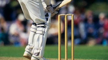 Cricket season could still go ahead.