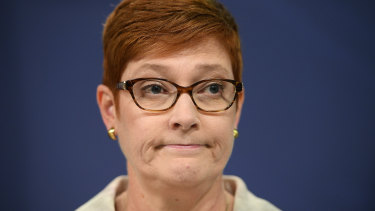 Foreign Minister Marise Payne appoints friend and ally to plum diplomatic post