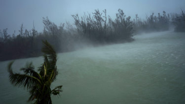 Strong winds from Hurricane Dorian blow the tops of trees and brush while whisking up water from the surface of a canal that leads to the sea, seen from the balcony of a hotel in Freeport, Grand Bahama, Bahamas.