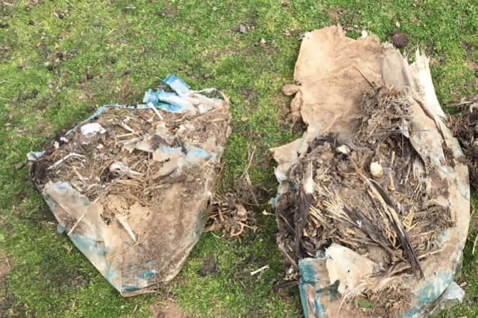 Four properties in Tubbut and Orbost in East Gippsland were raided by DELWP in June, uncovering more remains.