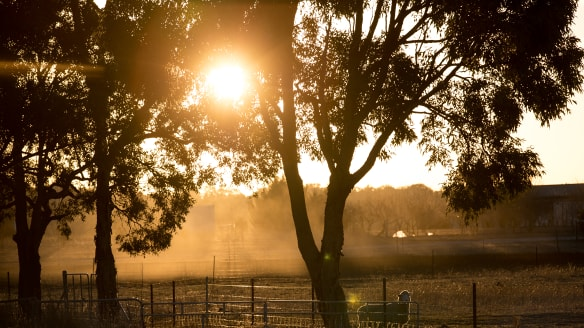 No break for drought-hit areas as new research points to warmer years
