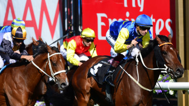 Le Romain will chase a third victory on his home track of Newcastle in the inaugural running of the S1 million The Hunter.