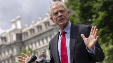 Peter Navarro, director of the National Trade Council, is a critic of Fauci in Trump's administration.