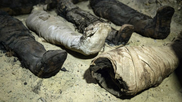 Mummies lie in a recently discovered burial chamber in the desert province of Minya, south of Cairo on Saturday.