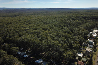 Developers have temporarily halted plans to develop unburnt forest land near the town of Manyana on the NSW South Coast after protests.