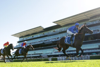 Anamoe is a $3.50 favourite for next month's Golden Rose.