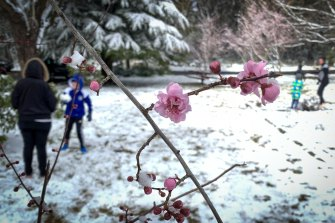 Locals enjoying the snow falls at Sutton Park in Blackheath.