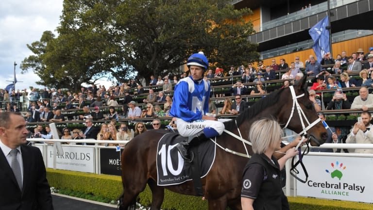 Amazing: Winx continues to improve heading into Saturday's Colgate Optic White Stakes.