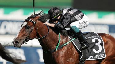 Leading Sydney apprentice Robbie Dolan rides Splintex to victory in April.