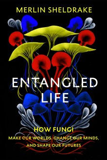 Entangled Life: How Fungi Make Our Worlds, Change Our Minds and shape Our Futures, Merlin Sheldrake, The Bodley Head