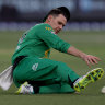 Peter Handscomb fields for the Stars.