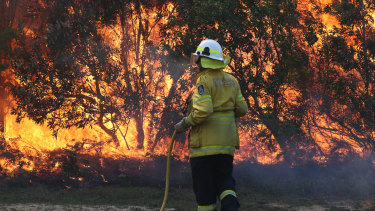 Firefighters battle bushfires in Angourie in the Clarence Valley.