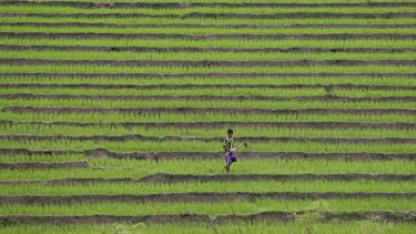 A man works with hoe at a terrace farm in the largely poor Shan state, Myanmar.