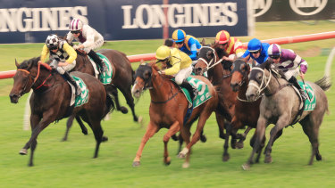 A good track is expected at Rosehill on Wednesday.