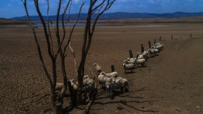 More drought in Australia's future as weather patterns change