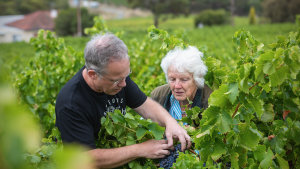 Thistledown co-owner Giles Cooke and grower Sue Trott assessing grenache fruit in the Trott vineyard.