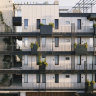 Ferns snake stairwells, petals drop from rooftops: the new city garden