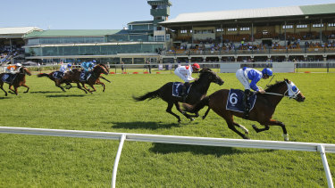 Tommy Berry takes the Spring Stakes on The Elanora during a successful day of Saturday racing at Newcastle.