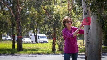 Carlota Quinlan and the Eltham Community Action Group tied red ribbons to trees on the roundabout that would be removed.