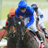 Avilius forces away with the Colgate Optic White Stakes at Randwick on Saturday