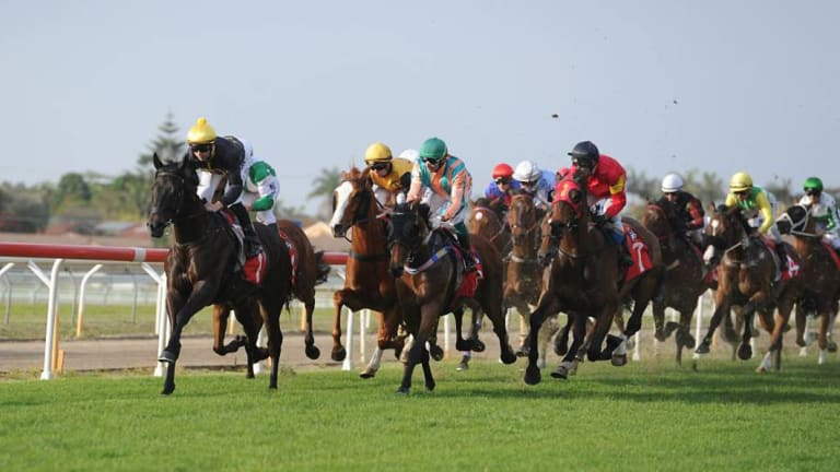 Competitive: there are a number of open races on the Port Macquarie card.