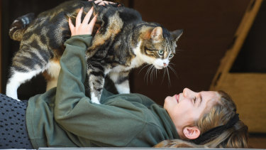 Zoe Knowles and her cat, Tiger Pi at  home in Petersham.