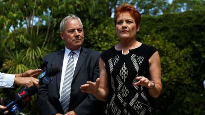One Nation's WA leader rebuffs Hanson, says party has 'strategic' plan to target lower house seats