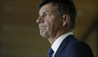 Angus Taylor is set to meet with other G20 energy ministers this week.
