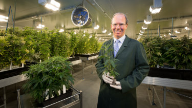 Cann Group's chief executive Peter Crock among the pot plants.