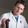 'We're flat out': Labs running overtime testing wine grapes for smoke taint