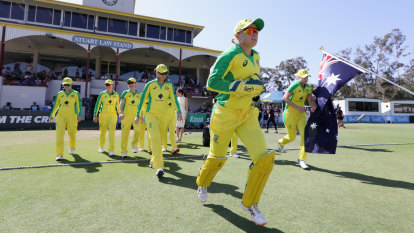 Cricket season ready to begin in earnest – if it ever really ended