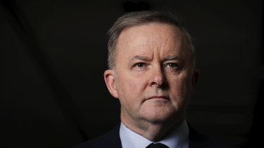 Labor leader Anthony Albanese has endorsed a move to examine increasing unemployment benefits.