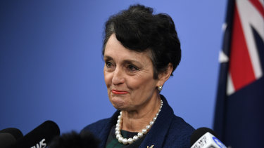 Families Minister Pru Goward announced she would not contest the next state election last month.
