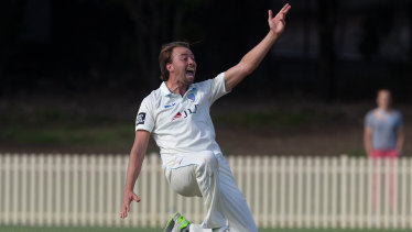 Shout: Harry Conway appeals during the Blues' Sheffield Shield win against Western Australia at Bankstown Oval.