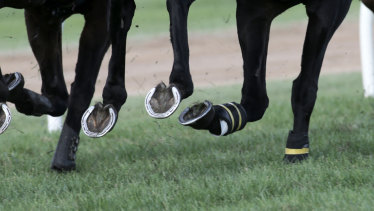 The state government has made mandatory vaccination a requirement for authorised workers - such as racing participants.