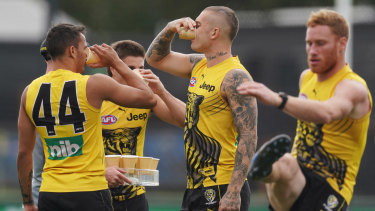 Caged Tigers: AFL clubs will have their work cut out in trying to maintain their players' match-fitness during the lockdown.